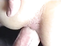 Amateur anal sex with skinny pale skin whore and small cock
