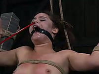 Brunette slave girl with a ring gag in mouth is punished by a master and a mistress