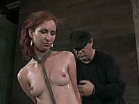 Lusty beauty with dyed hair is suspended in the beginning of bdsm play