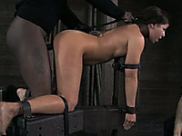 Voracious brunette beauty bounded on all fours with a hook in her ass