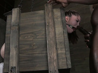 Wild BDSM session with submissive white girl in the box