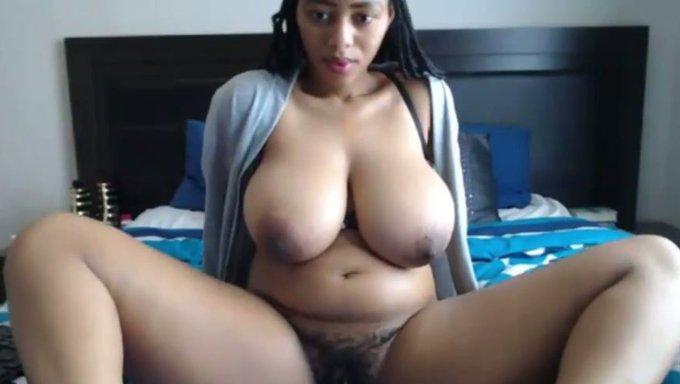 Thick black chicks on webcam live, confident nude